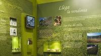 museo-del-vino-de-malaga